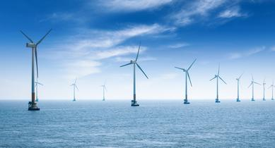 Impact of offshore wind on the marine environment by Liam P. Ó Cléirigh