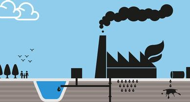 Environmental management by Douglas Adamson