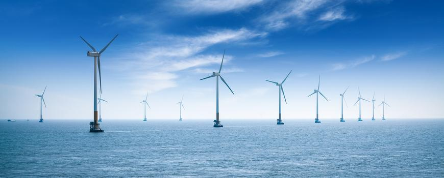 Impact of offshore wind on the marine environment